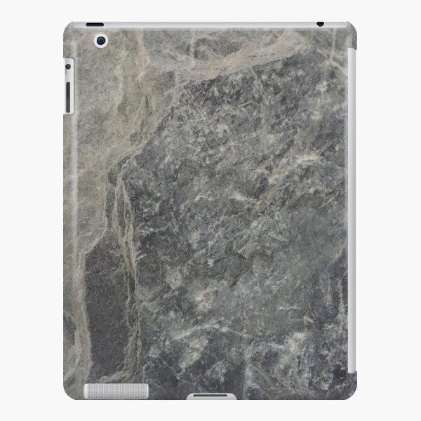 art 2 iPad Snap Case