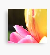 Spring Tulips (second piece to the set)  Canvas Print