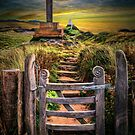 Gate to the Holy Island  by Adrian Evans