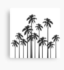 Black and White Exotic Tropical Palm Trees Canvas Print