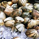 Shellfish on Ice by Kasia-D