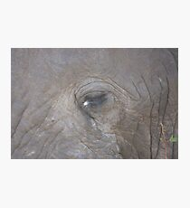Elephant eye Photographic Print