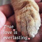 True love is everlasting. by Kamira Gayle