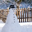 Snowman by Tracy Riddell