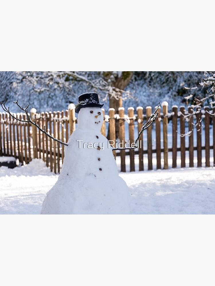 Snowman by taos