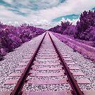 Train Tracks by Adam Nixon