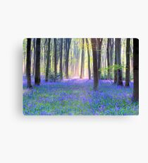Bluebell Spring - An English Bluebell Wood in Spring Canvas Print
