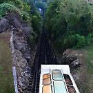 The Incline Railroad, Lookout Mountain, Chattanooga, Tn by Scott Mitchell