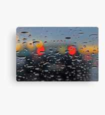 answering your call in the rain... Canvas Print