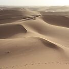 Footprints in the sand (Sahara, Morocco) by Christine Oakley