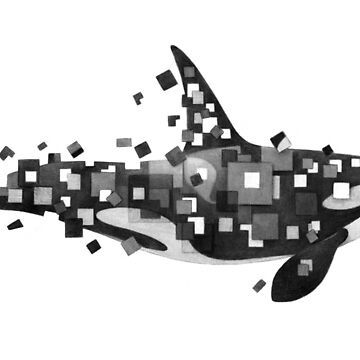 Fractured Killer Whale (Mono) by TerryFan