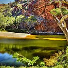 Ellery Creek by Terry Everson