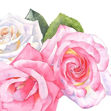 Rose Garden by Louisedemasi