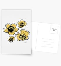 Yellow Buttercups Postcards