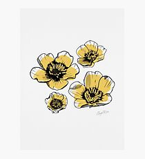 Yellow Buttercups Photographic Print