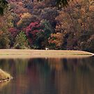 Autumn at Zanoni Mill by Susan Russell
