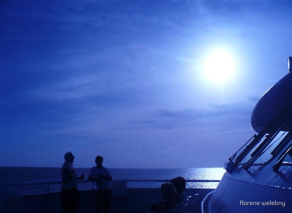 voyage Thru Blue by florene welebny