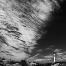 Light House at Cape Leeuwin  by Angelika  Vogel