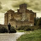 Loarre Castle by Luis Lacorte