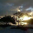 Key West by miravie