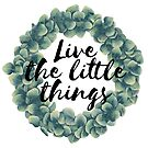 """""""Live the little things"""" QUOTE by brabikate"""