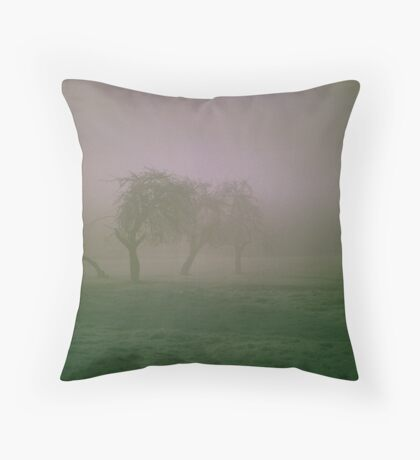 Morning Frost and Fog Throw Pillow