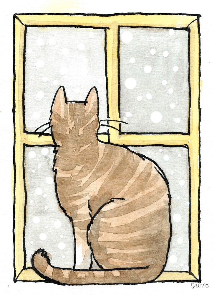 Cat staring out of window by Quivis