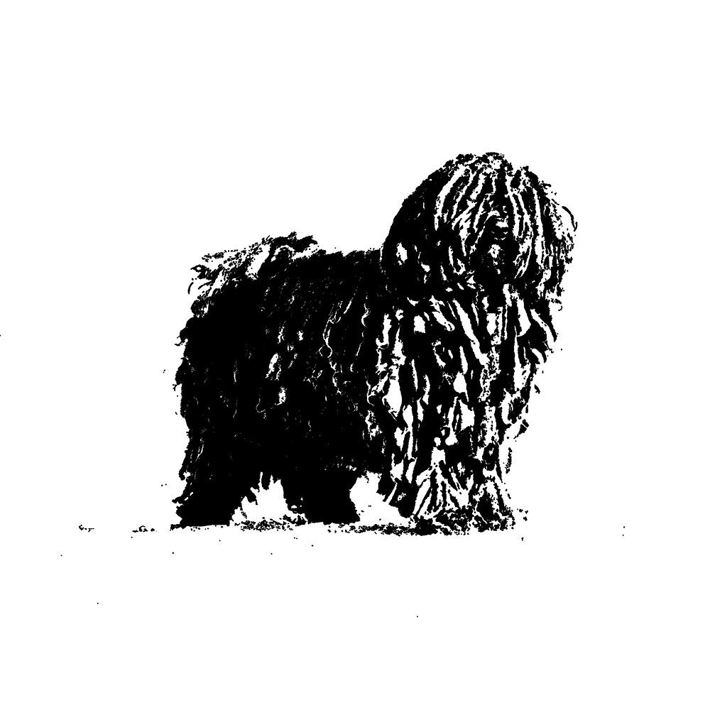 Black Hungarian Puli Dog Drawing by k0rry