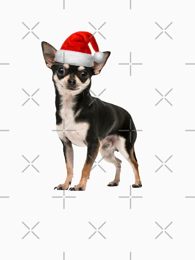 Cute Chihuahua Santa Hat by rkhy