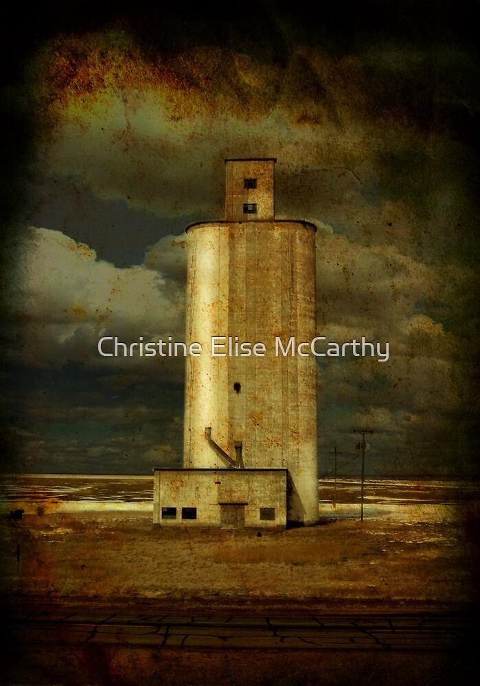 Conway, Texas by Christine Elise McCarthy