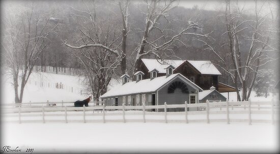 Lone Horse Ranch in Winter by Julie Everhart