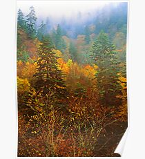 TRANSITION ZONE,AUTUMN Poster