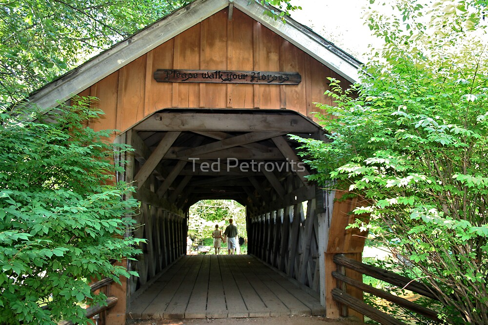 covered bridge by Ted Petrovits
