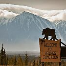 Welcome to Haines Junction by Marty Samis