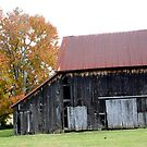 OLD BARN ON COUNTY LINE RD by Pauline Evans