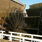 Steampower in polderland by jchanders