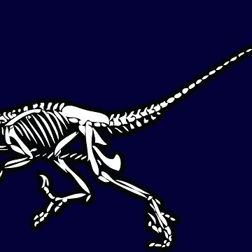 Raptor Bones by Real-Digital