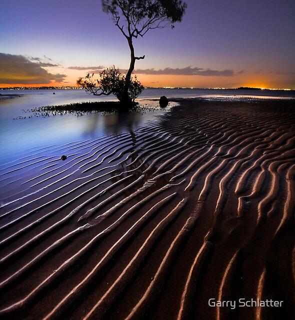 Everyones Tree by Garry Schlatter