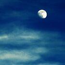 autumn moon by kibishipaul