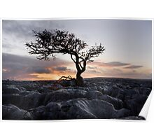 Wharfedale Sunset Poster