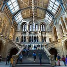 Natural History Museum by John Velocci