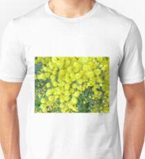 Acacia Dealbata (Silver Wattle) T-Shirt