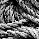 Old Rope by Smaxi
