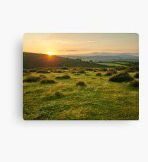 Dartmoor National Park Canvas Print
