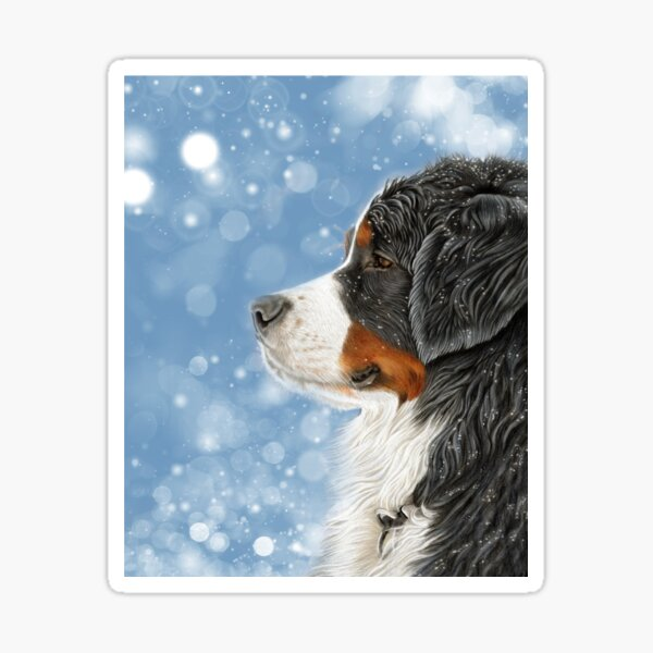 Bernese Mountain Dog - Snow Is Falling Sticker