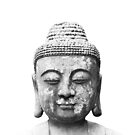 Black and White Buddha Head  by dawnyoungart
