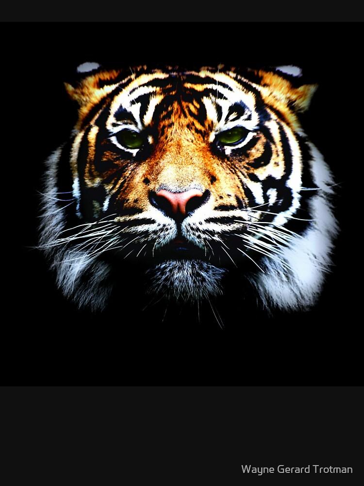 Tiger by redmoondragon