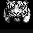 Tiger (Monochrome) by Wayne Gerard Trotman