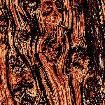 Mandarin Bark by PatrickMHiggins