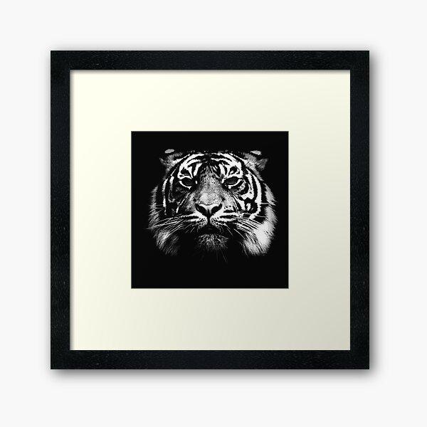Illustrated Tiger  Framed Art Print